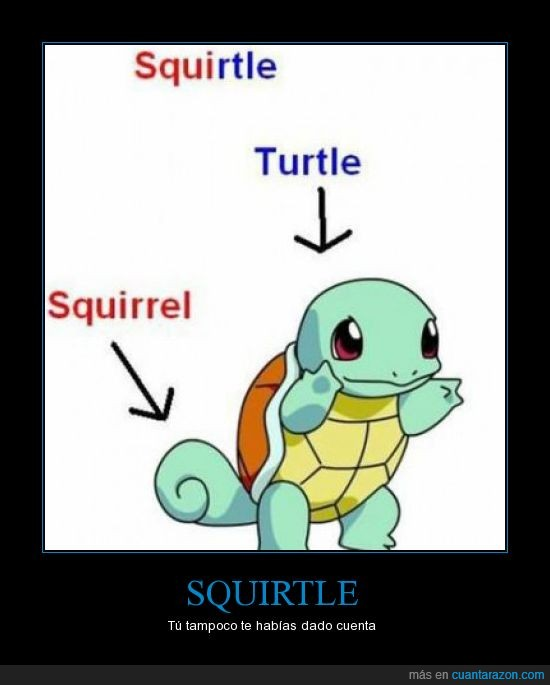 admitelo,ardilla,squirtle,tortuga