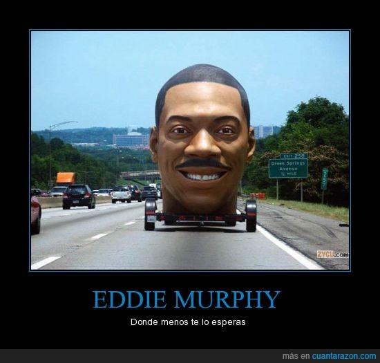 autopista,cabeza,carroza,coche,eddie murphy,lo más normal,típico