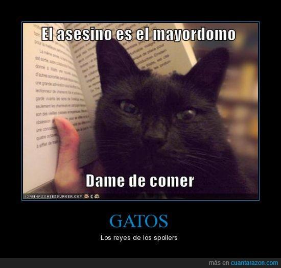 asesino,comer,final,gatos,joder,libro,mayordomo