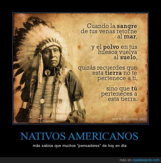 conciencia,ecología,humanos,nativos americanos,proverbio,tierra