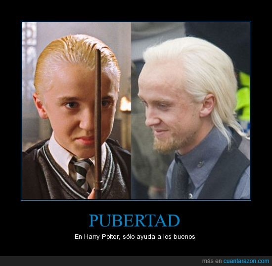 antes,despues,draco malfoy,harry potter,tom felton