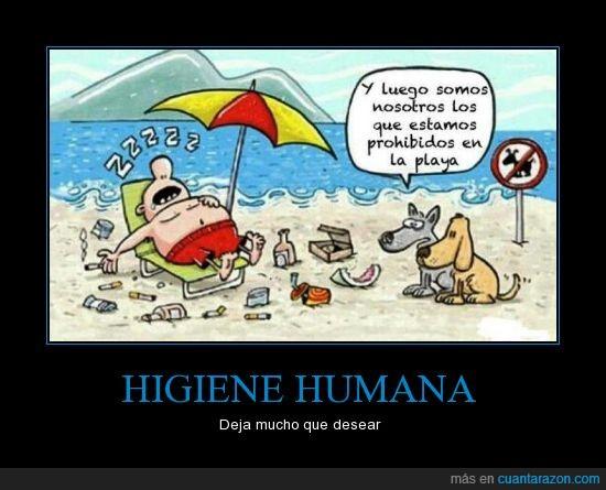 humano,perro,playa,prohibido