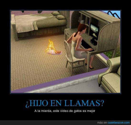 bebe,fuego,gatito gatitoooo,gato,hijo,internet,llamas,sims