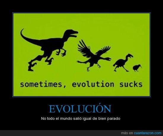 darwin te odio,dinosaurio,evolución,grande,kiwi,pajaro,pequeño,pluma