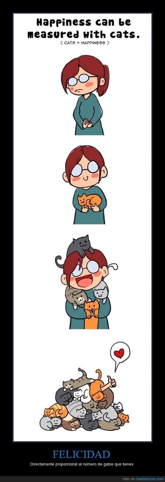 amor,comic,corazon,felicidad,feliz,gato,gatos,loca,medir,tiernos