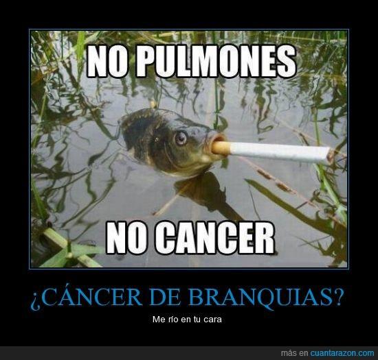 apagar,cancer,cigarro,encender,espera,fumar,pez,pulmones