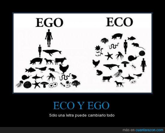 cadena,conciencia,ecologia,ecologico,ego,egocentrico,piramide