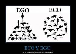Enlace a ECO Y EGO