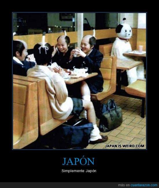 cabeza,chica,colegiala,disfraz,Extraños,gato,Japon,perro,rapada,restaurante,samurai,wtf