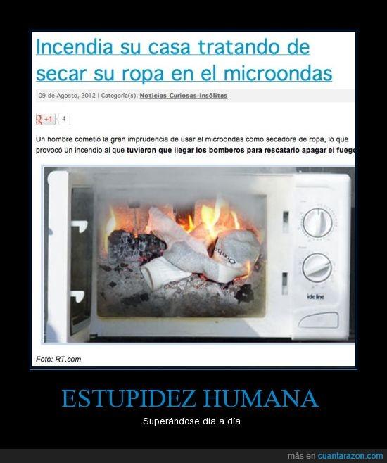 estupidez humana