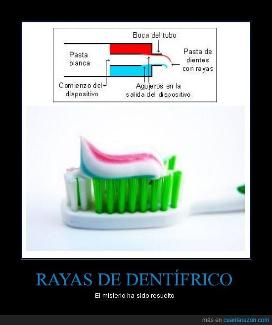 cepillo,curioso,dentífrico,Pasta de dientes,rayas