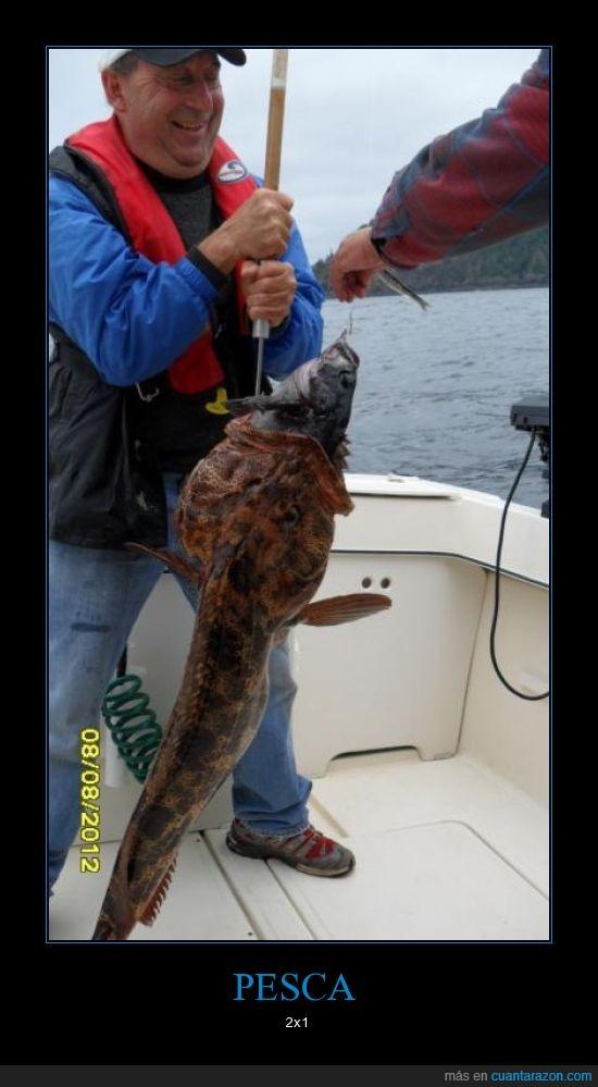 ataca,caña,casualidad,combo breaker,comer,dentro,dos,pesca,pez,suerte