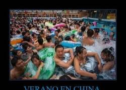 Enlace a VERANO EN CHINA