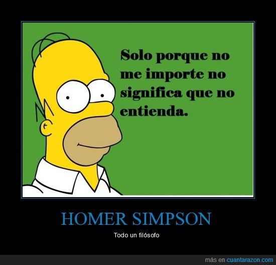 entender,filósofo,frase,Homer Simpson,importar