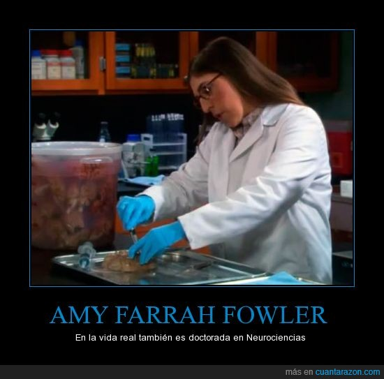 Amy,Big Bang Theory,cerebro,doctora,farrah fowler,Mayim Bialik,neurociencia