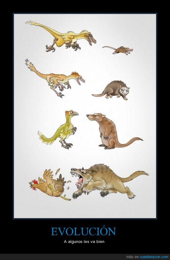 coyote,dinosaurio,evolucion,gallina,lobo,raton