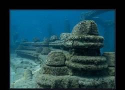 Enlace a Memorial Reef Neptune