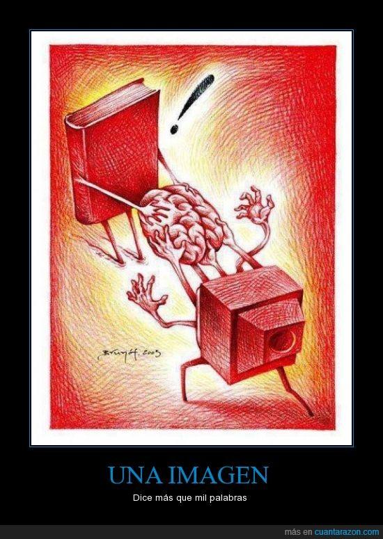 cerebro,cultura,libro,television