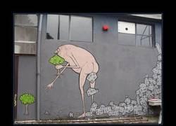 Enlace a GRAFFITI