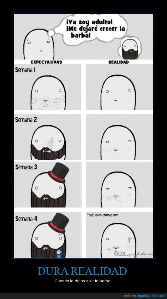 barba,crecer,elegante,leñador,like a sir,pelo,pelusilla,señor,sombra