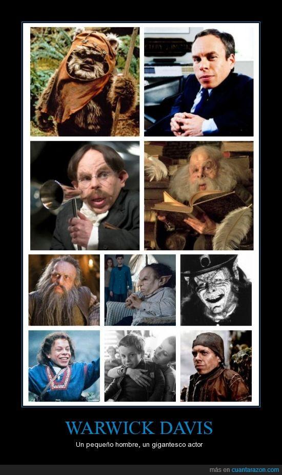 actor,enano,harry potter,Leprechaun,WARWICK DAVIS,Wicket,willow