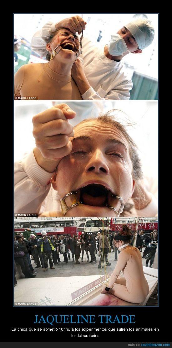 animales,conciencia,crueldad,experimentos,exponer