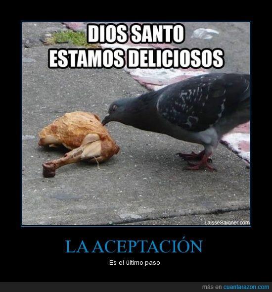canibalismo,comer,paloma,pollo