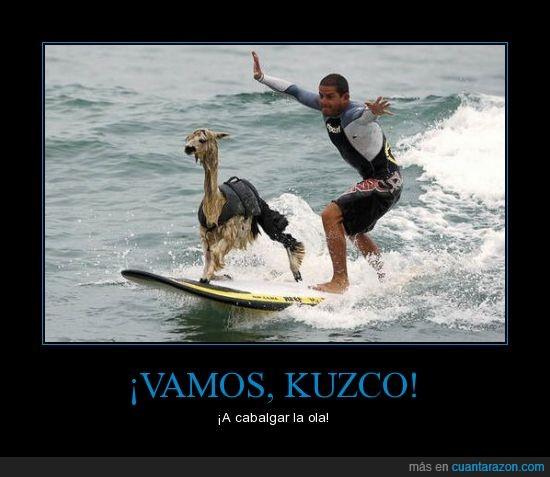 dibujos,kuzco,llama,surf