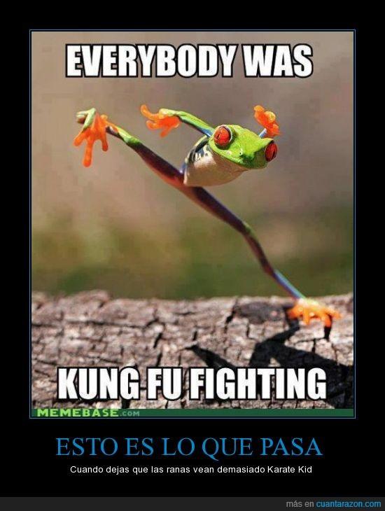karate,karate kid,kung fu fighting,rana
