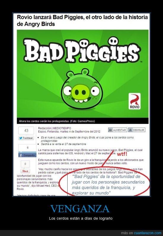 angry birds,friki,gamer,venganza