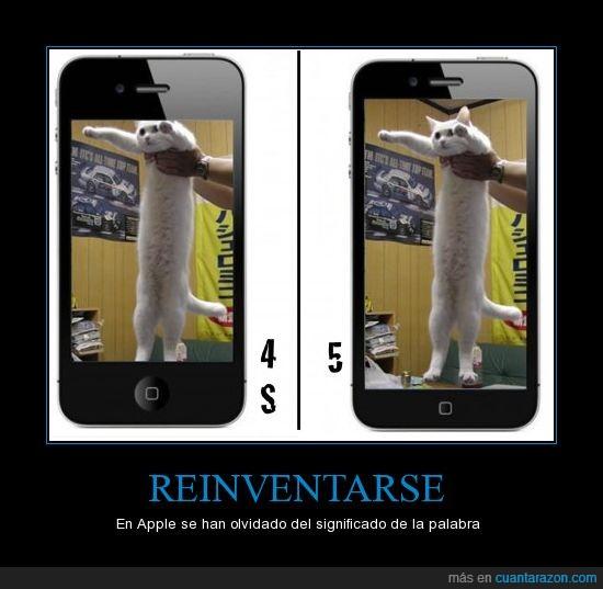 Apple,gato largo,iPhone,pantalla,Steve Jobs
