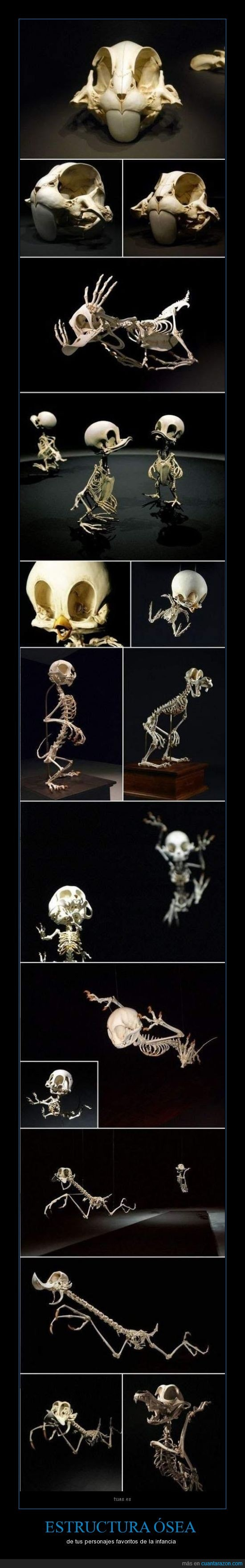 animales,correcaminos,dibujos animados,disney,esqueleto,huesos,piolín