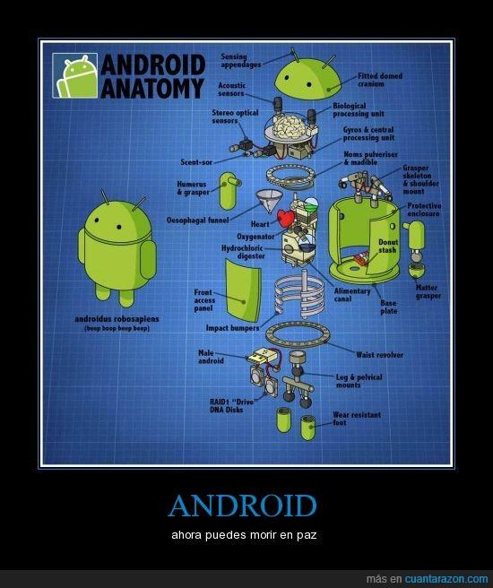 android,robot verde todopoderoso,viva google tu dominaras el mundo