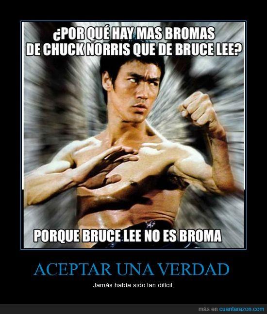 Bruce Lee,Chuck Norris,Díganle a mi perro que lo amo,Seguramente este es mi último día