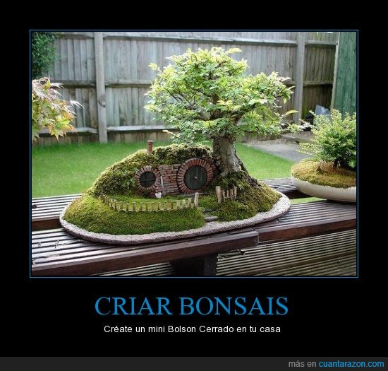 bonsai,friki,señor de los anillos