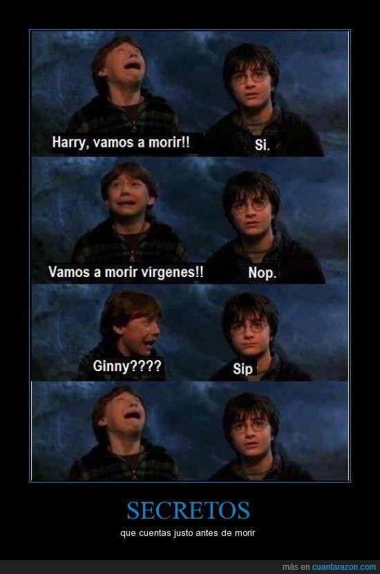 desgracia,Harry Potter,muerte,secreto
