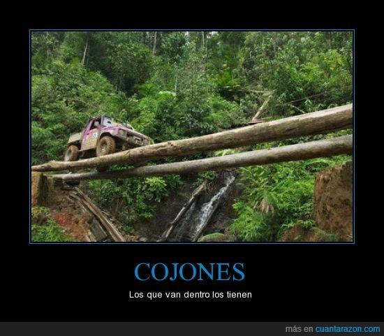 caer,coche,peligro,puente,todoterrreno,tronco