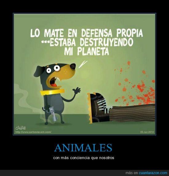 defensa,hombre,humano,mata,perro,pistola,planeta,propia