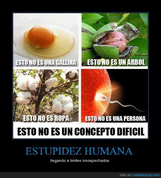 aborto,algodon,arbol,estupidez,feto,gallina,huevo,nuez,persona,ropa,semilla