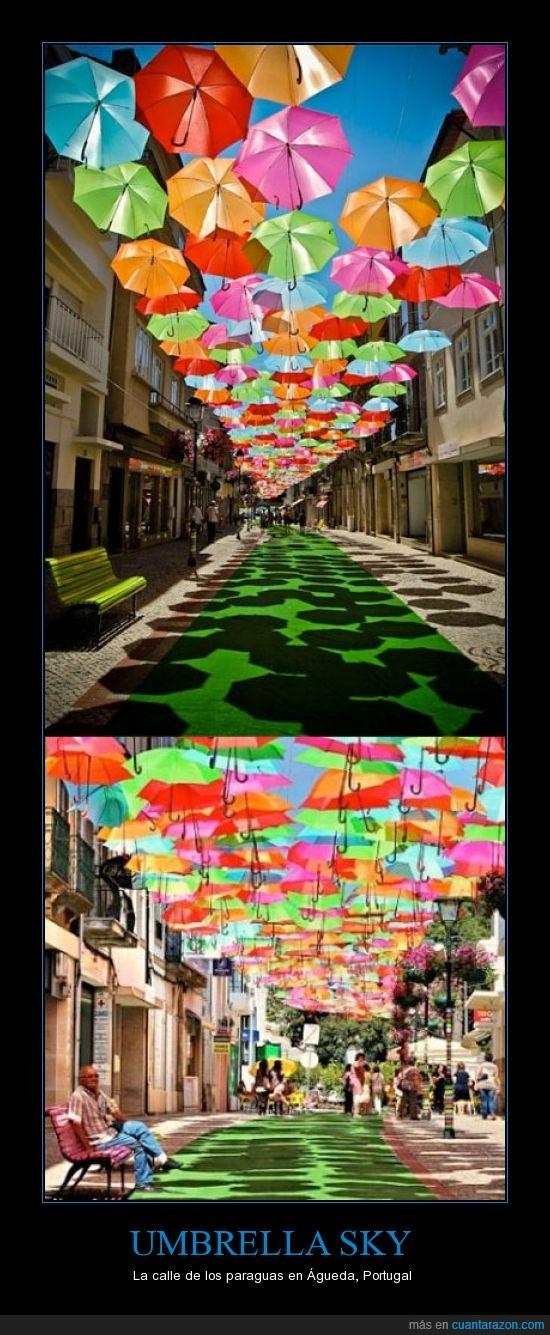 Agueda,calle,colores,paraguas,Portugal,sombrillas