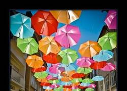 Enlace a UMBRELLA SKY