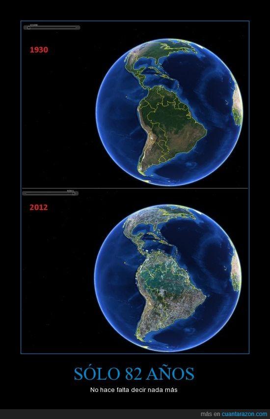 america,arboles,deforestacion,planeta,sud,tierra,vegetacion