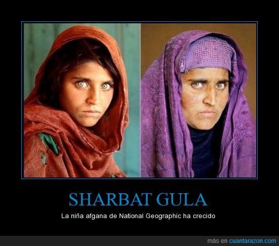 afgana,afganistan,guerra,niña,ojos,portada
