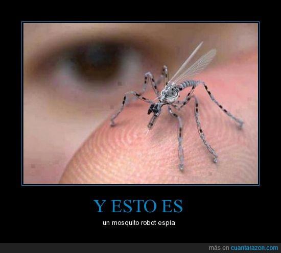 diminuto,espia,micro,mosquito,pequeño,robot