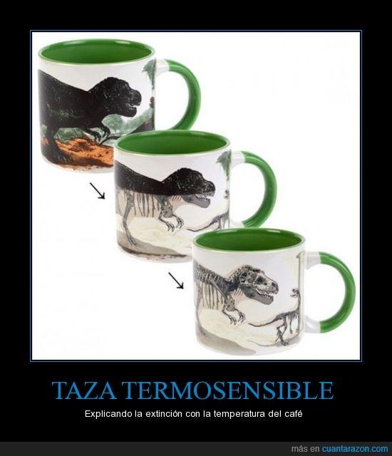 café,dinosaurios,extinción,taza,temperatura
