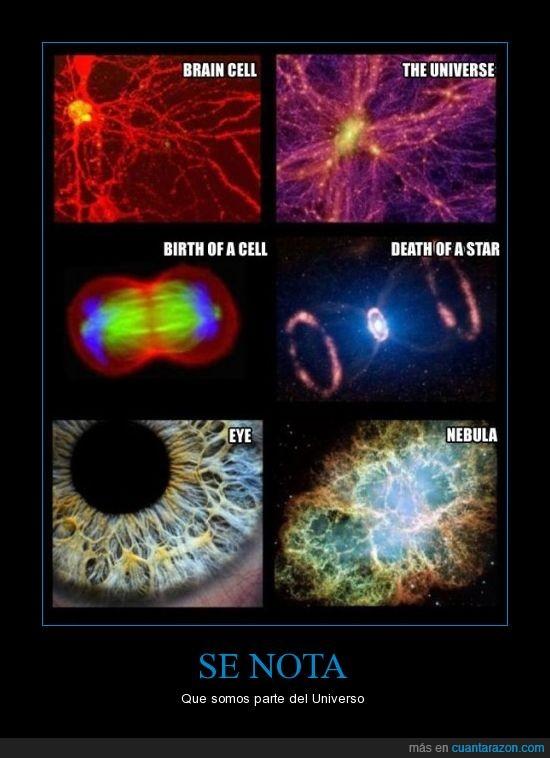 estrellas,humanos,nebulas,ojos,universo