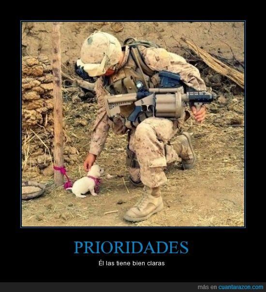 guerra,perrito,prioridades,soldado,tierno