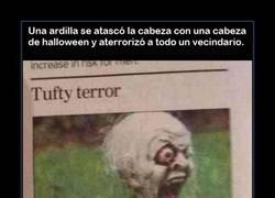 Enlace a HALLOWEEN