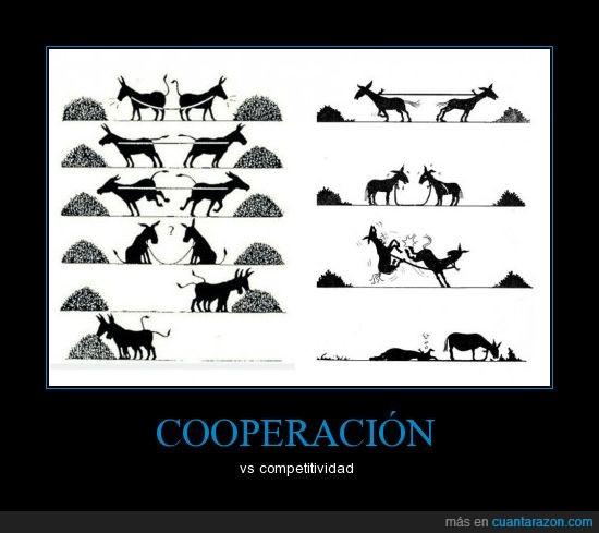 burros,competir,cooperar,quino