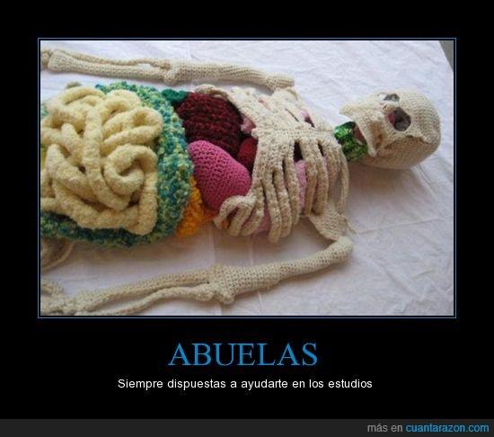 abuela,Anatomía,ayuda,calavera,esqueleto,estudiar,etc etc,huesos,tejido,tripas acolchadas